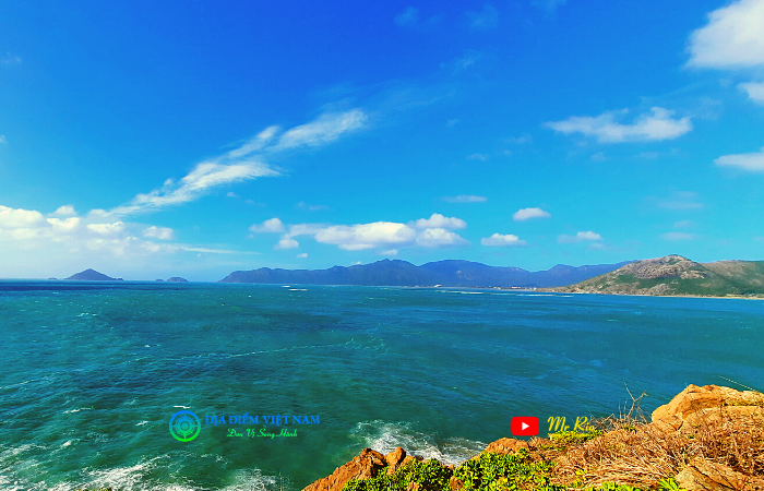 Cung Đường Cỏ Ống Nơi Check-In Đẹp Tại Côn Đảo